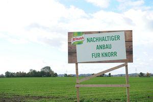 Farm von KNORR